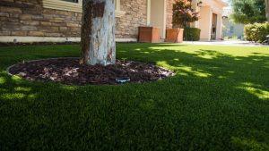 artificial grass Melbourne
